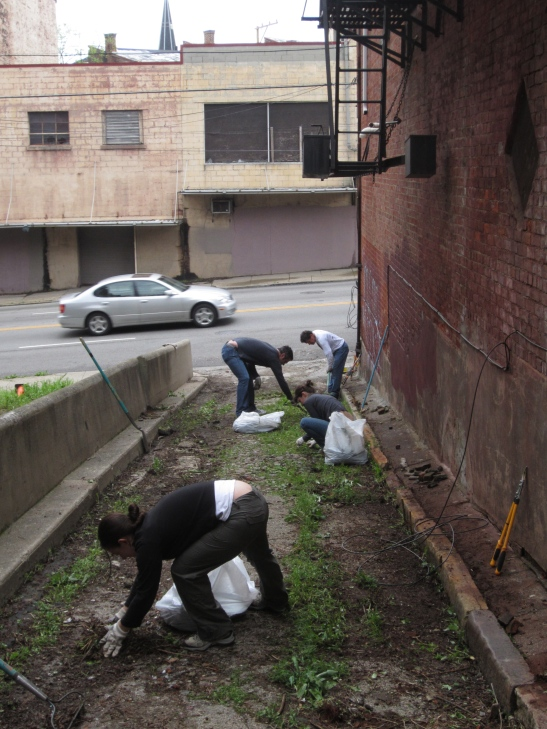 Cleanup at Peete Alley in 2012